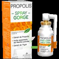 3 CHENES PROPOLIS Spray gorge Fl/25ml à LA COTE-SAINT-ANDRÉ