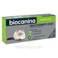Biocanina Multivermyx Comprimés Vermifuge Chat B/2 à LA COTE-SAINT-ANDRÉ