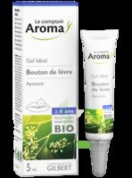 AROMA EXPRESS Gel labial à LA COTE-SAINT-ANDRÉ