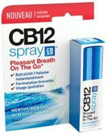 CB 12 Spray haleine fraîche 15ml à LA COTE-SAINT-ANDRÉ