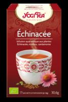 Yogi Tea Echinacee à LA COTE-SAINT-ANDRÉ