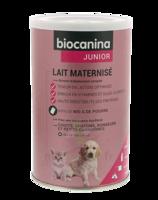 Biocanina Lait poudre maternisé B/400g à LA COTE-SAINT-ANDRÉ