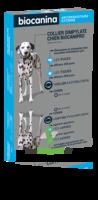 Biocanipro Collier chien B/1 à LA COTE-SAINT-ANDRÉ