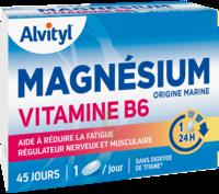 Govital Magnésium Vitamine B6 Comprimés B/45 à LA COTE-SAINT-ANDRÉ