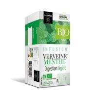 Dayang Verveine Menthe Bio 20 Infusettes à LA COTE-SAINT-ANDRÉ