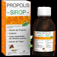 3 CHENES PROPOLIS Sirop Fl/200ml à LA COTE-SAINT-ANDRÉ