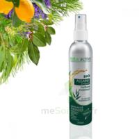 Assaini'spray Huiles essentielles BIO Fl/200ml à LA COTE-SAINT-ANDRÉ