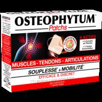 Osteophytum Patchs Muscles Coups Tendons Articulations 2b/14 à LA COTE-SAINT-ANDRÉ